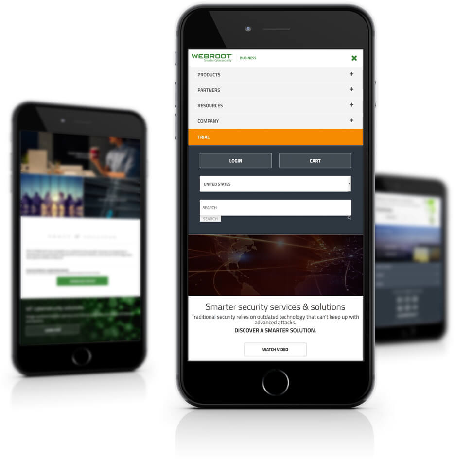 Mobile Responsive Business Website Design Mobile Devices